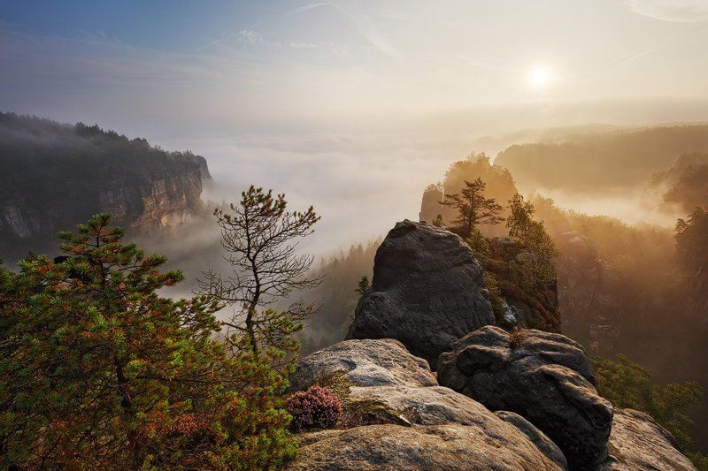 Fog, Germany, Light, Mist, Morning, Rocks, Sandstone, Saxon switzerland, Summer Jurassic Worldphoto preview