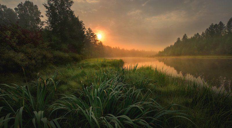 озеро, тайга, рассвет, лес, утро, туман Утро в тайгеphoto preview