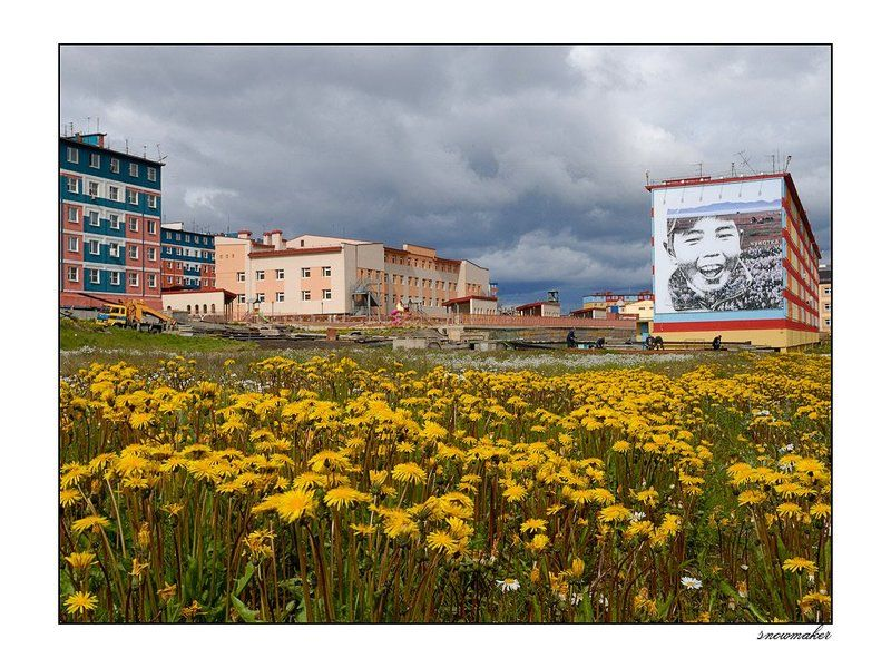 Multicolors of Anadyr VIphoto preview