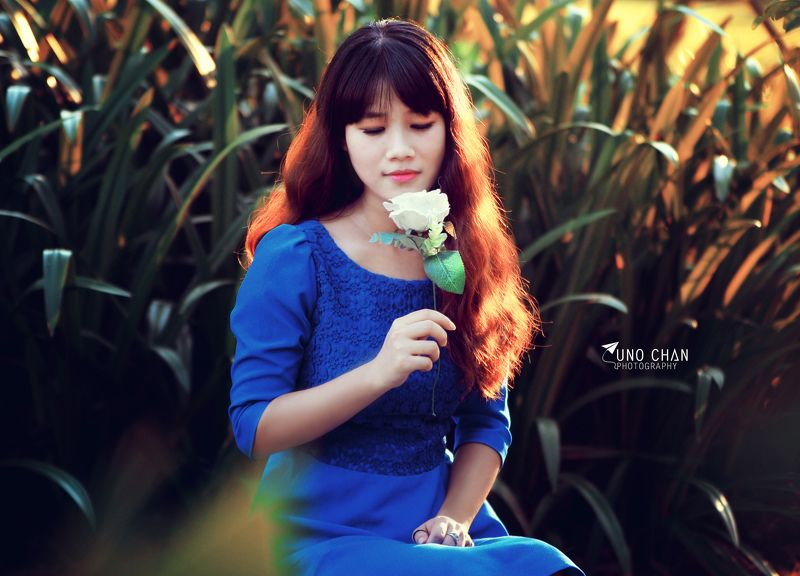 unochan, flower, blue, white, girl, beautyful, sunset Lệ Trâmphoto preview