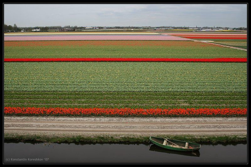 нидерланды, голландия, lisse, keukenhof, кейкенхоф, тюльпаны, лодка, мельницы, holland, windmills, канал Голландский коверphoto preview