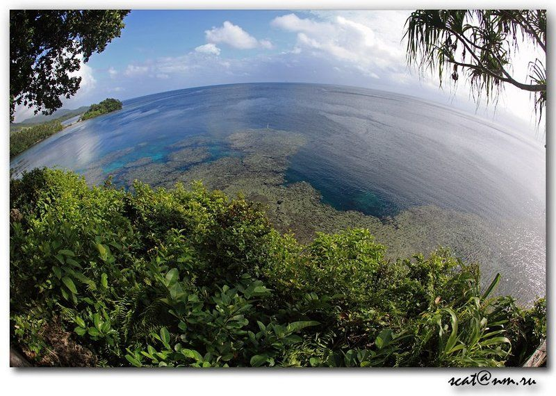 papua new guinea, round world, ocean, рифы, reef, папуа The Round World *Papua**photo preview