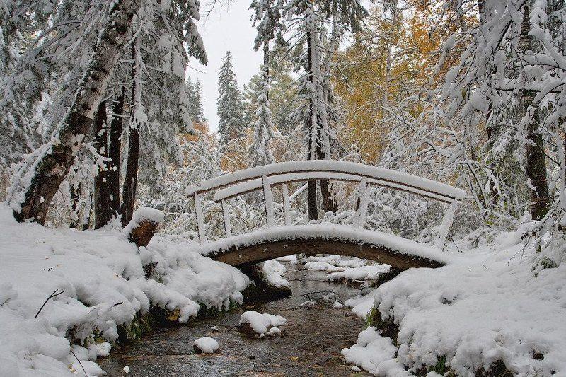 бурятия, улан-удэ, сентябрь, снег, снегопад photo preview