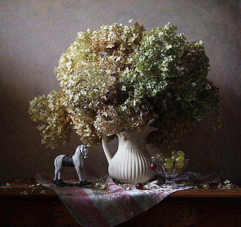 гортензия, цветы, элегия Элегияphoto preview