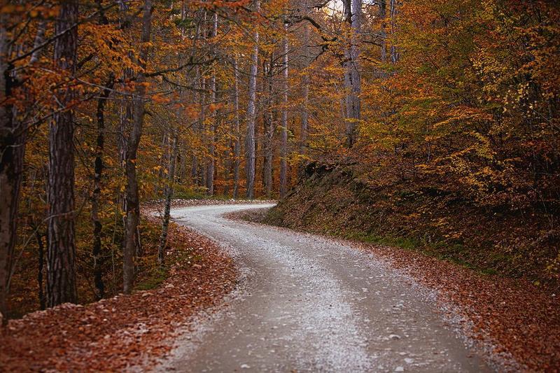 турция, осень, дорога Boluphoto preview