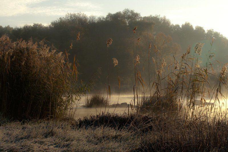 Река. Утро. Туман. Островки.photo preview