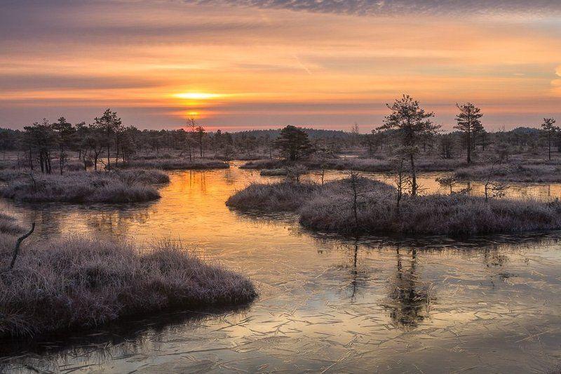 Eriks, Latvia
