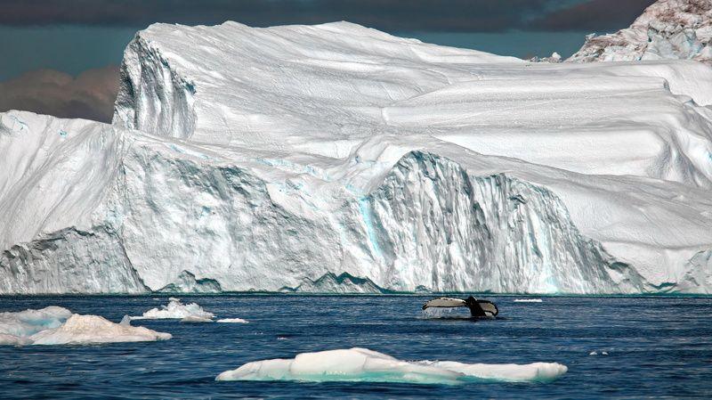 Гренландская идиллияphoto preview