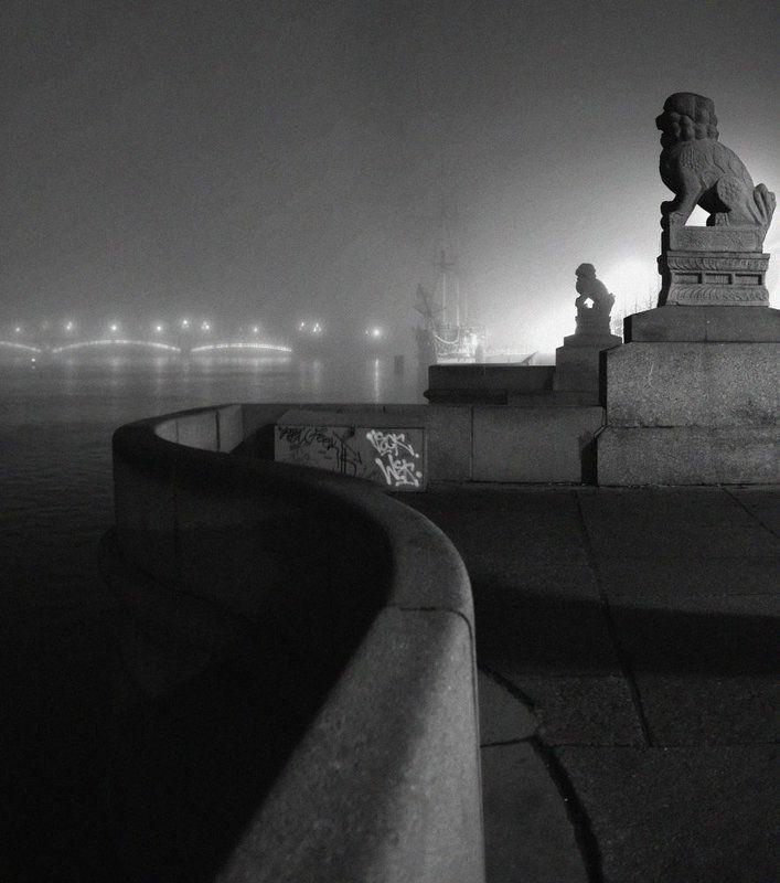 Этюд со львамиphoto preview