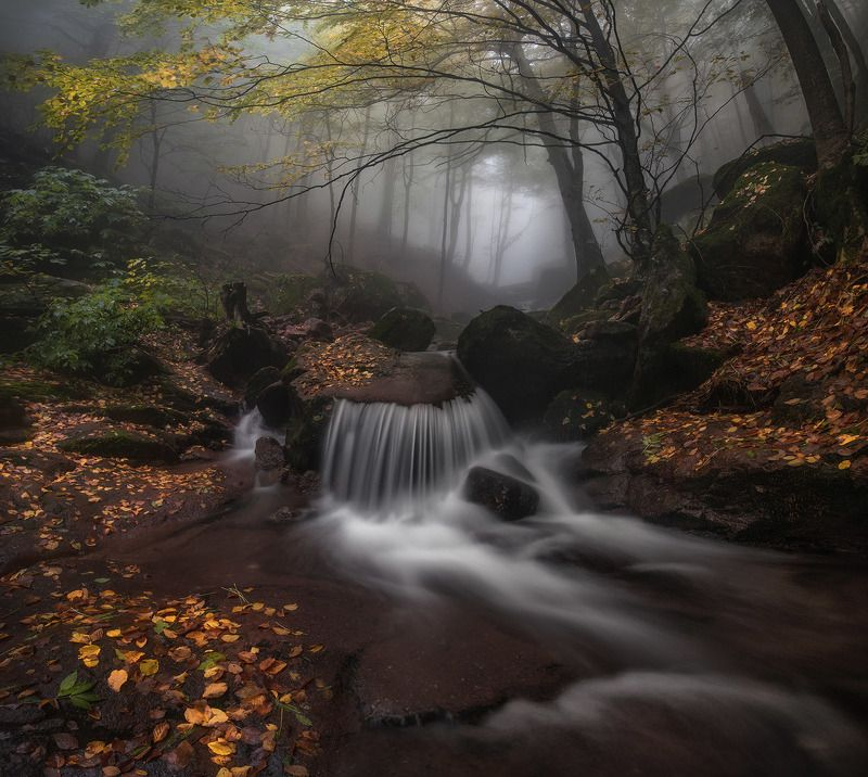 Река в туманеphoto preview
