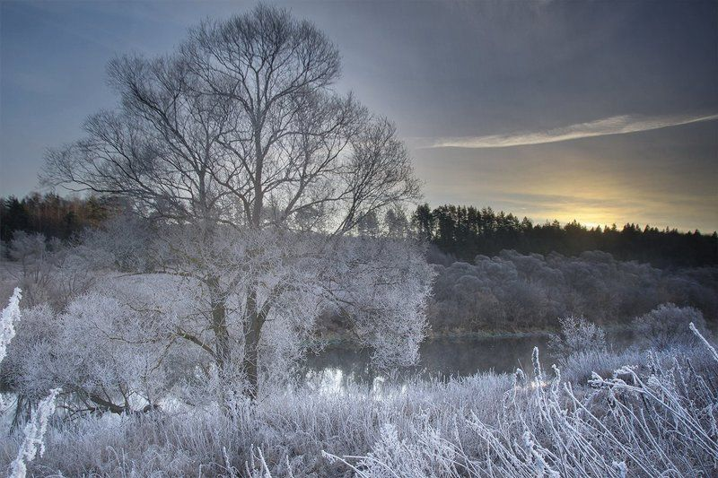 Иней, Ноябрь, Ока, Осень, Рассвет, Река, Тульская область, Туман, Утро Солнце взойдетphoto preview