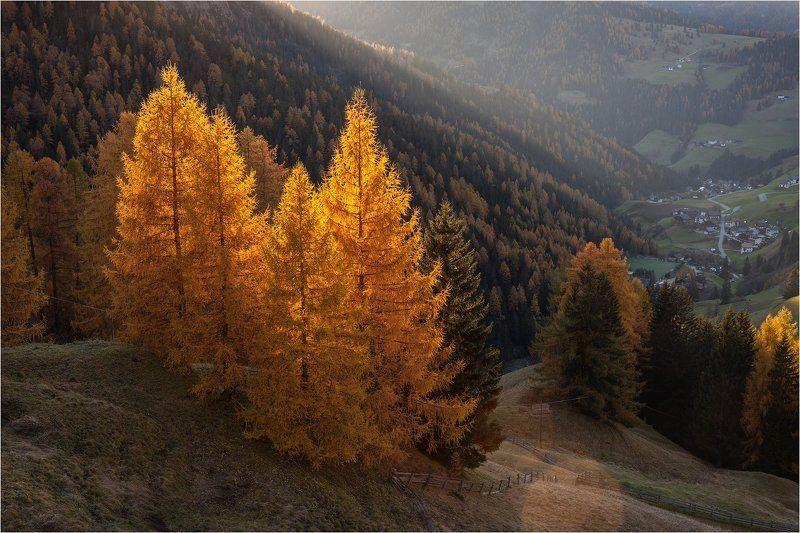 италия, доломиты, альпы, осень, italy, dolomites Color of The Dolomites.photo preview
