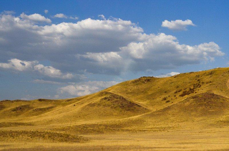 Бибарыс, Kazakhstan