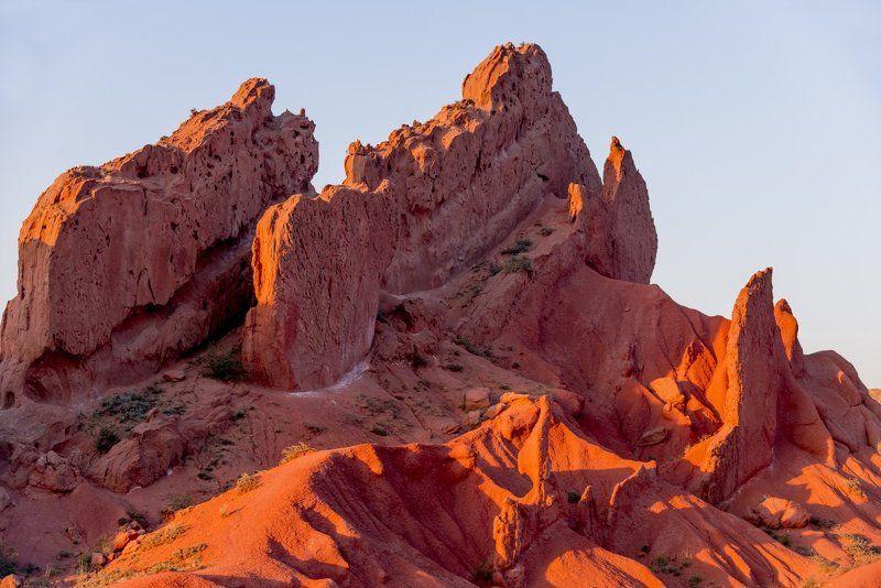 grigoriy bedenko, ветровая эрозия, водяная эрозия, григорий беденко, иссык-куль, каньон, киргизия, красный песчаник, кыргызстан, озеро, песчаник, психоделия, растение, сказка, скалы, ущелье, хвощ, эрозия # Каньон \