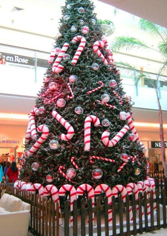 Ливан, Бейрут, Рождество Рождество в Бейрутеphoto preview