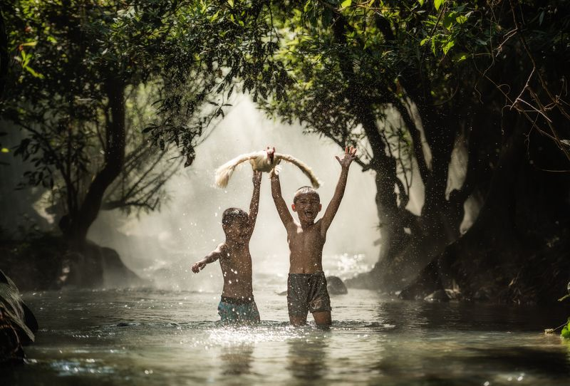boy; open; kid; retro; move; water; fly; hands; blond; flowers; arms; happiness; duck; sunny; wheat; thai; summer; jump; freedom; two; walk; smile; recreation; face; body; run; motion; outdoors; joy; cheerful; fresh; child; nature; alone; little; sport; h Funnyphoto preview