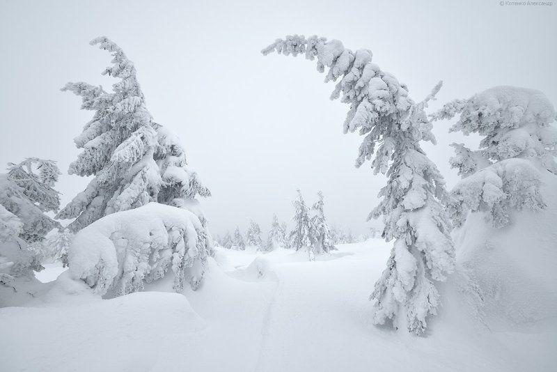 Зима, Карпаты ***photo preview