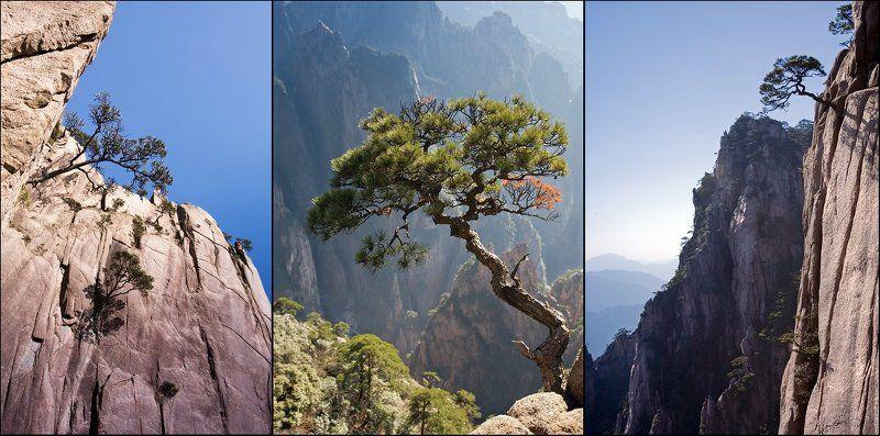 Наскальная жизнь...или воспоминания о горах Хуаншаньphoto preview