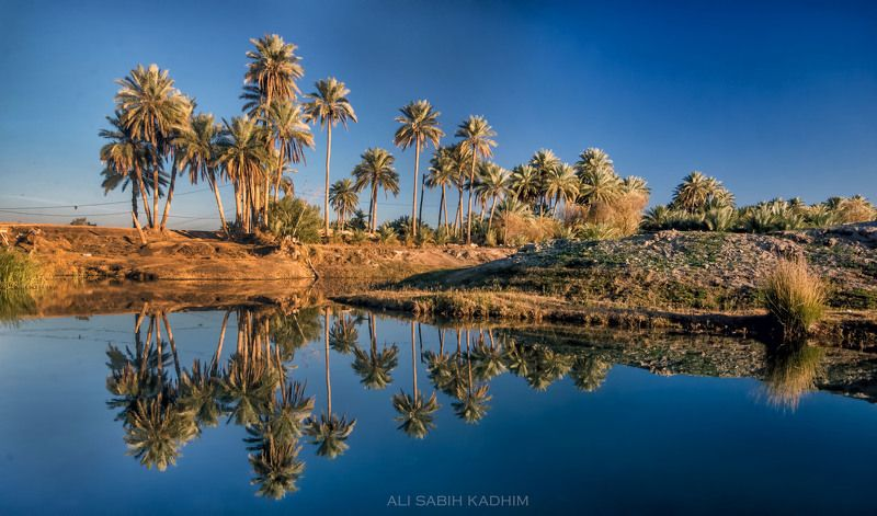 iraq IRAQ/kufaphoto preview