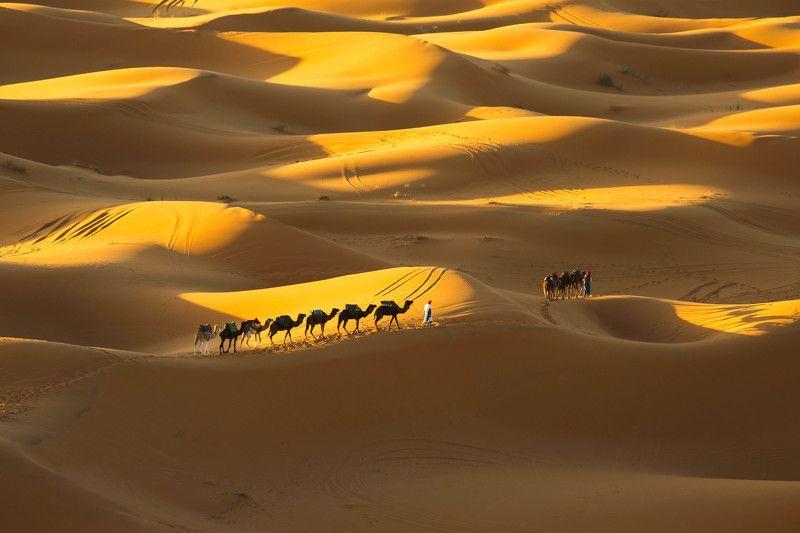 Merzouga, Sahara Desert - Morocco.photo preview