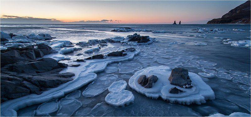Canon5Dm2, Tamron, Японское море Из жизни теплых морей...photo preview