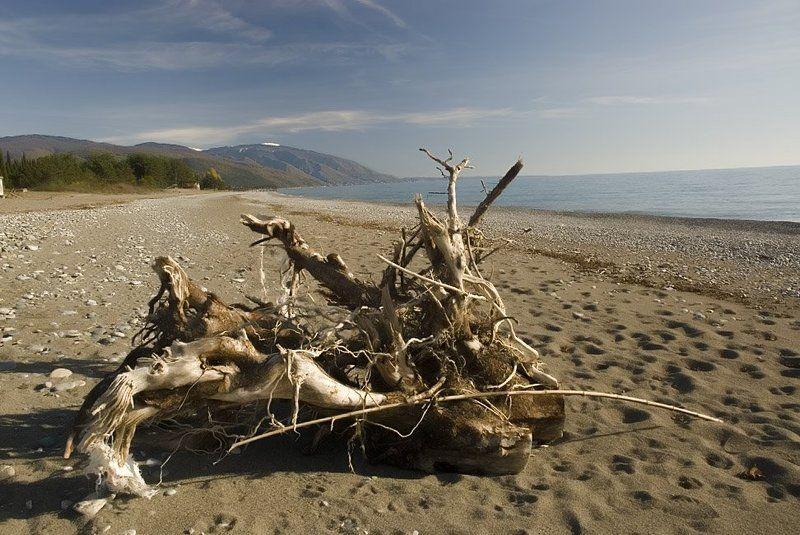 абхазия, страна души Пляжная Химера.photo preview