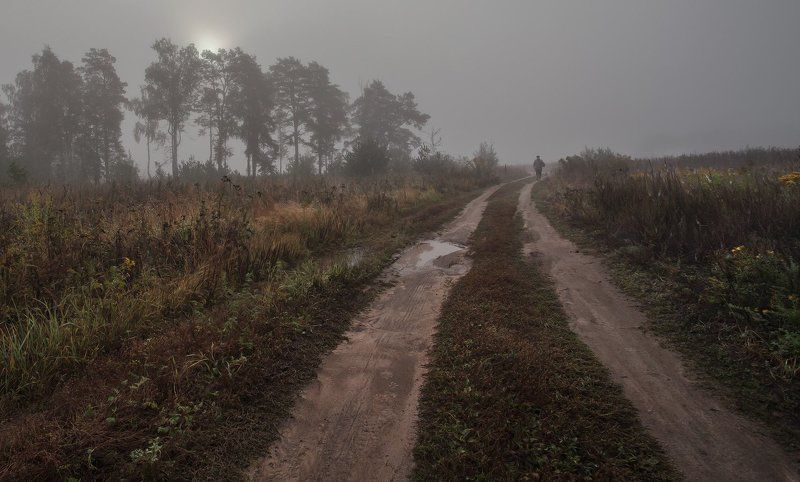 Подмосковь, Купавна, Сентябрь Явление грибника народуphoto preview