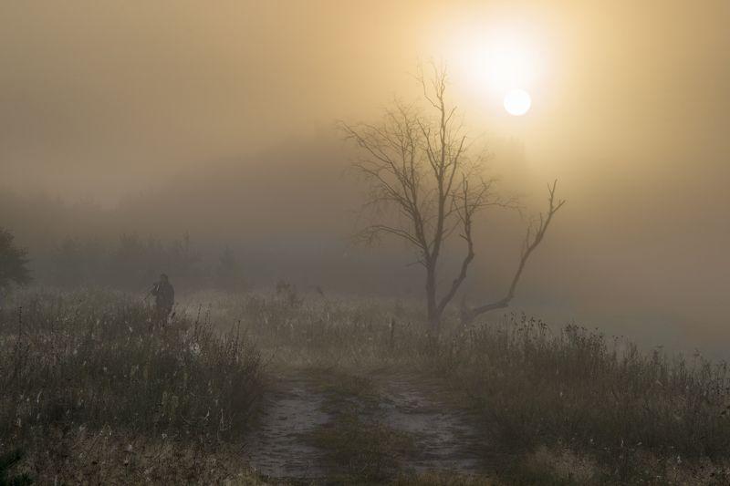 landscape, nature, river, russia, summer, sunset, лето, пейзаж, природа, рассвет, река, россия, смоленская область, солнце, туман, угра Мистический рассвет 2photo preview