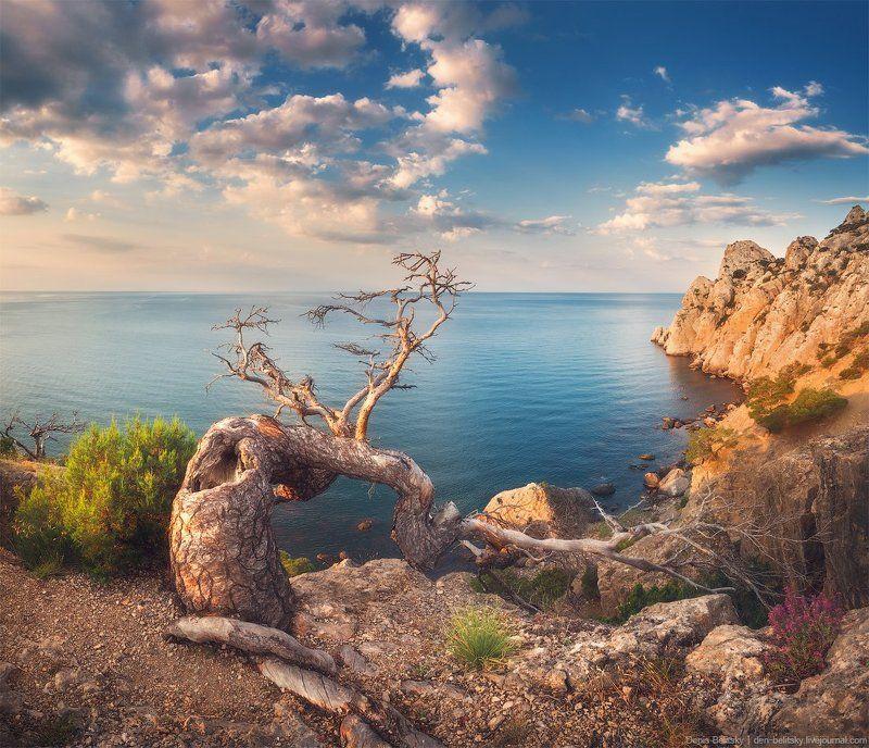 пейзаж, горы, дерево,  скалы, рассвет, небо, облака, море, свет, солнце, крым, новый свет, путешествие Рассвет на Караул-Оба (Новый Свет, Крым)photo preview