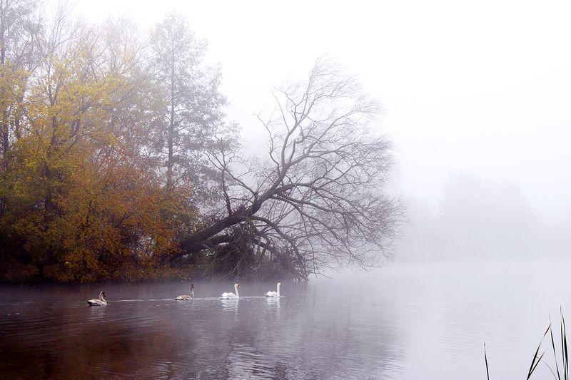 евгений, Belarus
