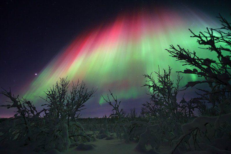 Заполярье, Звезды, Зима, Красный, Мороз, Ночь, Север, Северное сияние ***photo preview