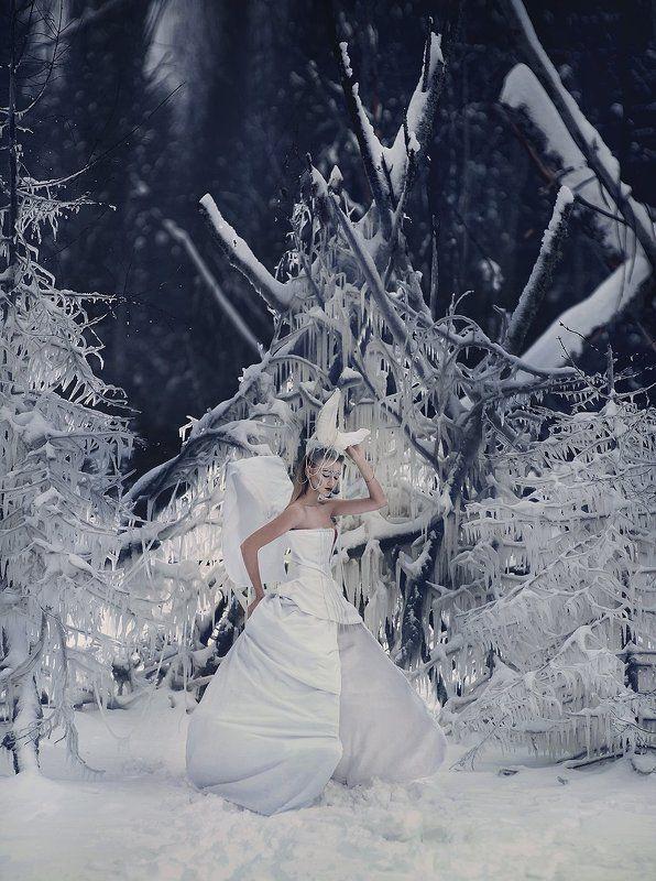 Королевстов во льдахphoto preview