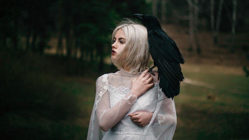 девушка, ворон, портрет, лес, невеста, арт, фотограф, екатерина троян, okeyteam, kate_troyan Crows bridephoto preview