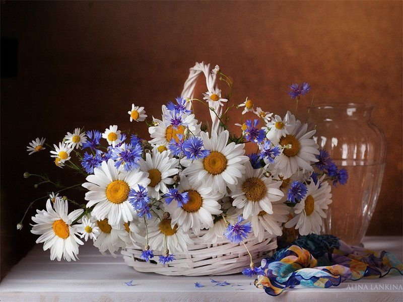 натюрморт, фотонатюрморт, ромашки, цветы, букет, корзина, ваза, алина ланкина, лето Про лето...photo preview