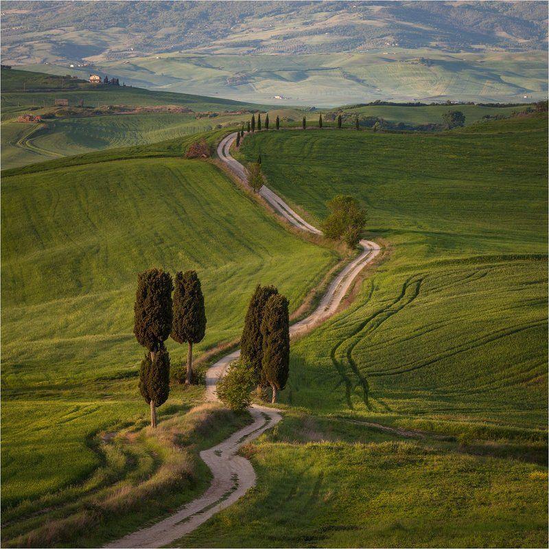 Italy, Pienza, Tuscany, Италия, Тоскана Дорога \