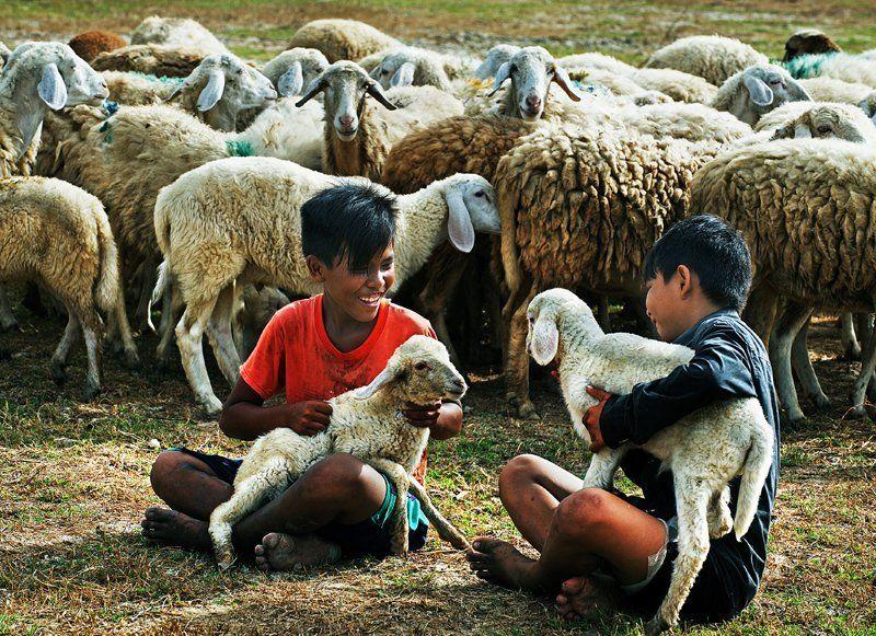 Viet Van Tran, Vietnam