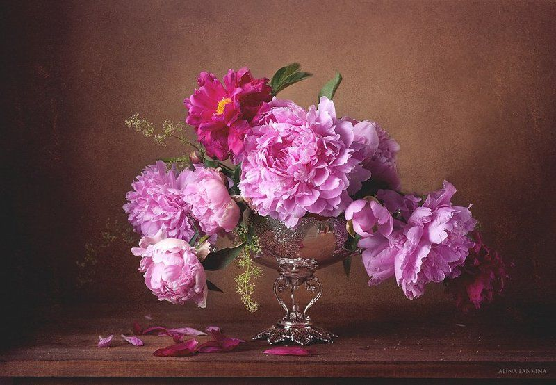 пионы, натюрморт, фотонатюрморт, алина ланкина, лето, цветы, букет И снова про пионы...photo preview