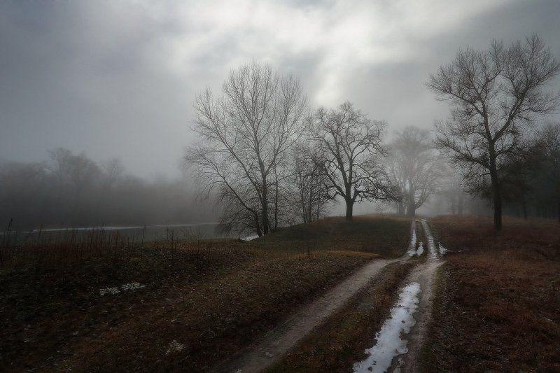 Дымно-туманный, плаксивый  февраль.photo preview