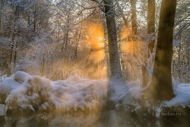 beauty, branches, fairy tale, ice, landscape, morning, rays, river, russia, snow, sun, trees, water, winter, ветки, вода, деревья, зима, красота, лед, лучи, пейзаж, речка, россия, сказка, снег, солнце, утро Игра в пряткиphoto preview