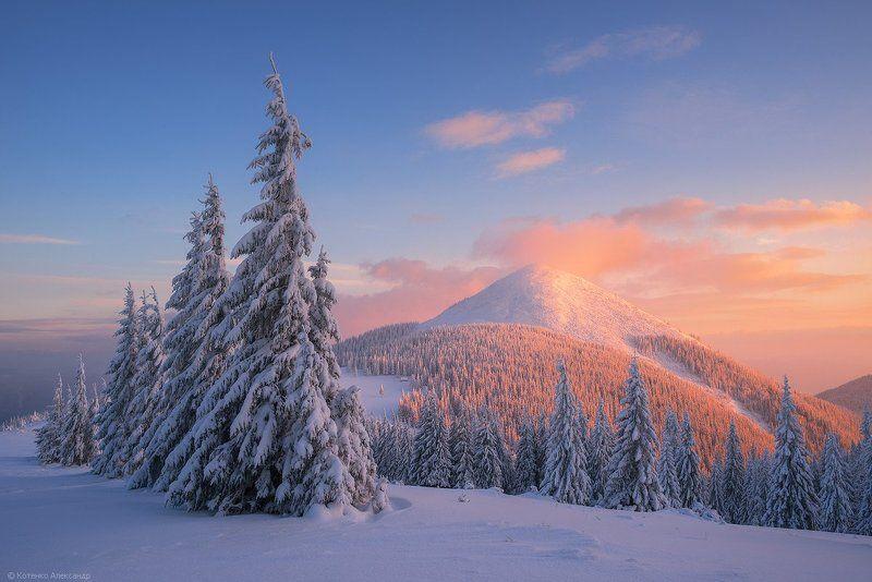 Горы, Зима, Карпаты, Хомьяк ***photo preview