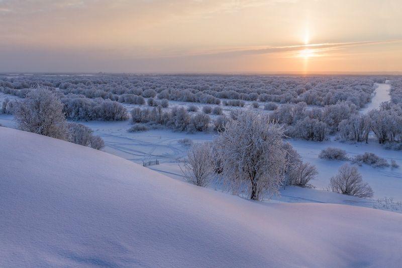 зима закат сугробы деревья иней солнце следы снег Январский закатphoto preview