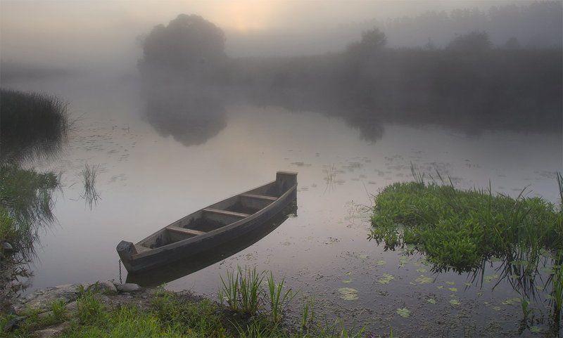 d3100, nikon, лето, пейзаж, природа, рассвет, река, россия, смоленская область, солнце, туман, угра Одно летнее утроphoto preview