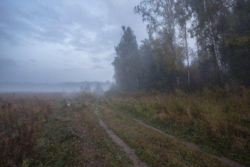 Купавна, Подмосковье, Сентябрь.  Осенними дорогами покояphoto preview