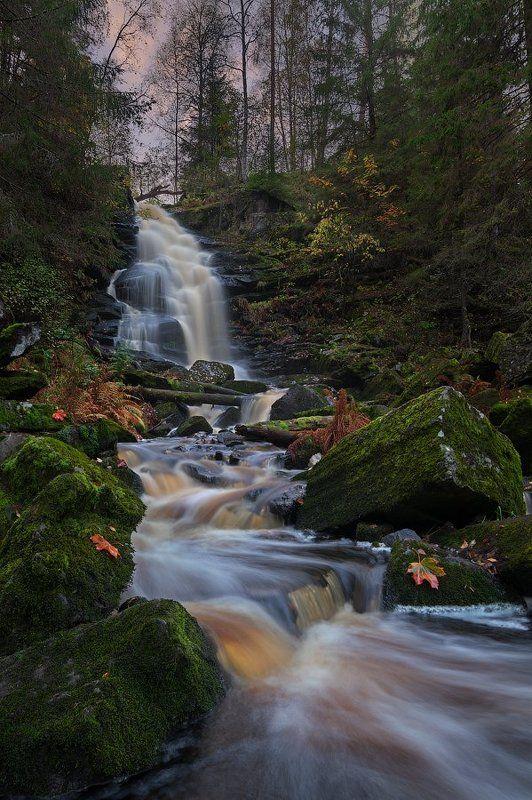 водопад, карелия, рассвет Карелия: осеннее утроphoto preview