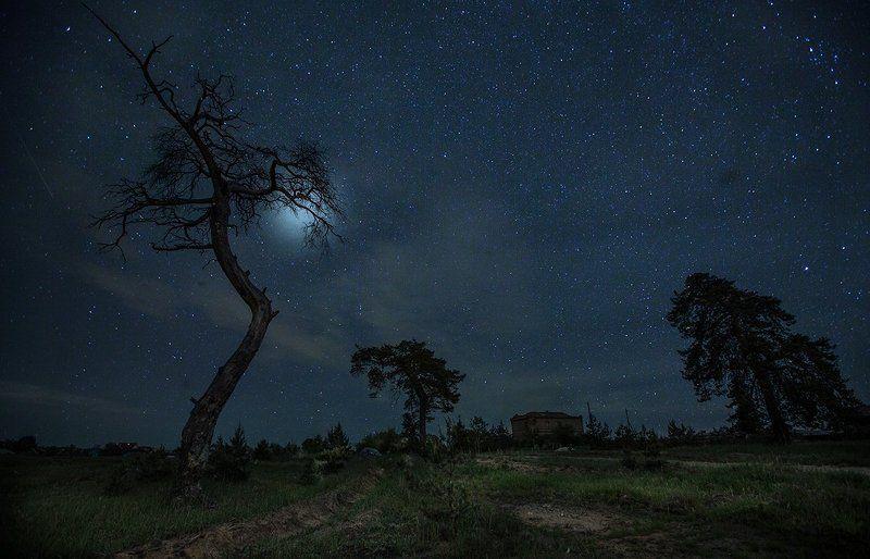 Сельцы, ночь, двойная экспозиция деревня Сельцы и... двойная экспозицияphoto preview