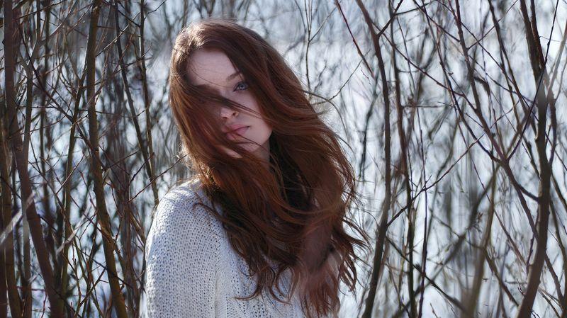 голубые глаза, мягкий свет, светлые волосы, длинные волосы, контровой свет, девушка, женщина, в парке,зима, портрет,blue eyes, soft light, blond hair, long hair, backlight, girl, woman, park, winter, portrait,headsho photo preview