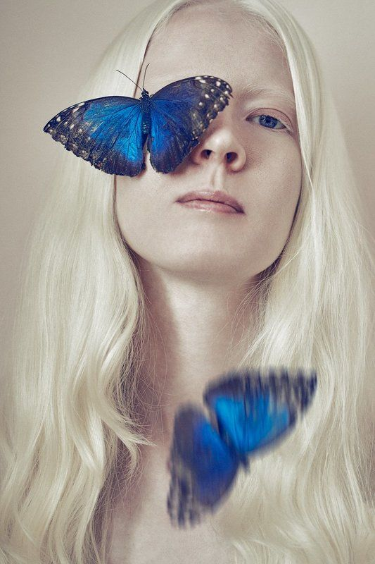 Dessy and the butterfliesphoto preview