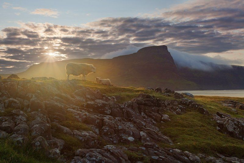 шотландия, рассвет, scotland, skye, neist point, sunrise Шотландия: доброе утро, Скай!photo preview