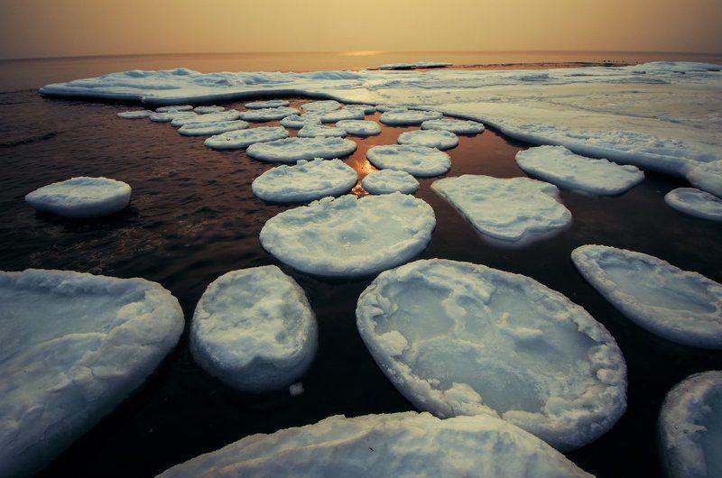 Лёд, море, зима, Приморский край Фабрика по производству блинчиковphoto preview