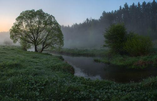 Утро на берегу лесной реки....